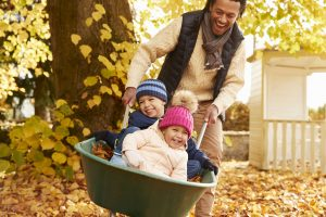 Father In Autumn Garden Gives Children Ride In Wheelbarrow